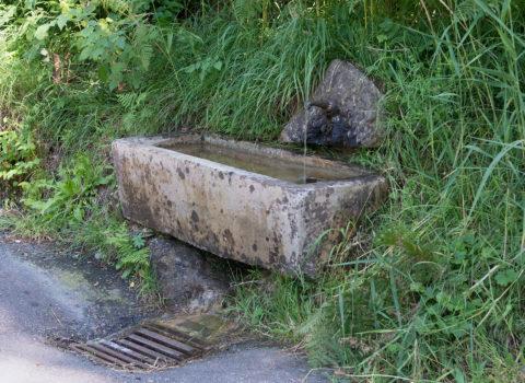 Brunnen Brünnelirank, Seebodenalp - 1915 -Eigentum der WKG