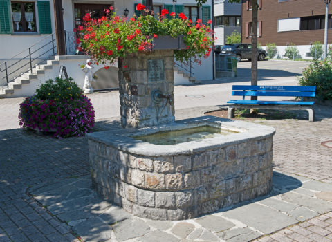 Brunnen Dorplatz Immensee - 1936 - Eigentum Bezirk